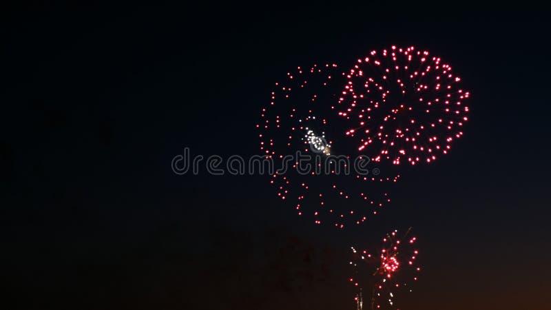 Fuegos artificiales hermosos en el día de fiesta del día de la ciudad, explosiones grandes del saludo en el cielo nocturno imágenes de archivo libres de regalías