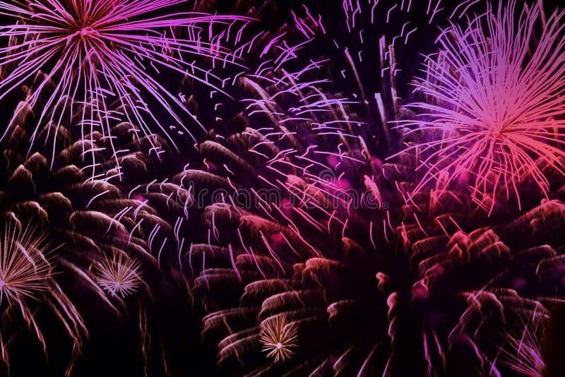 Fuegos artificiales púrpuras vivos brillantes con las chispas Los dispositivos de pirotécnica explosivos para estético y el entre fotografía de archivo