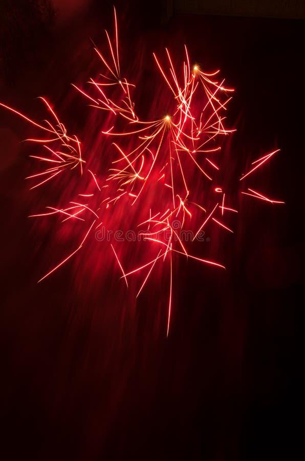 Fuegos artificiales rojos repartidos con el espacio de la copia imágenes de archivo libres de regalías