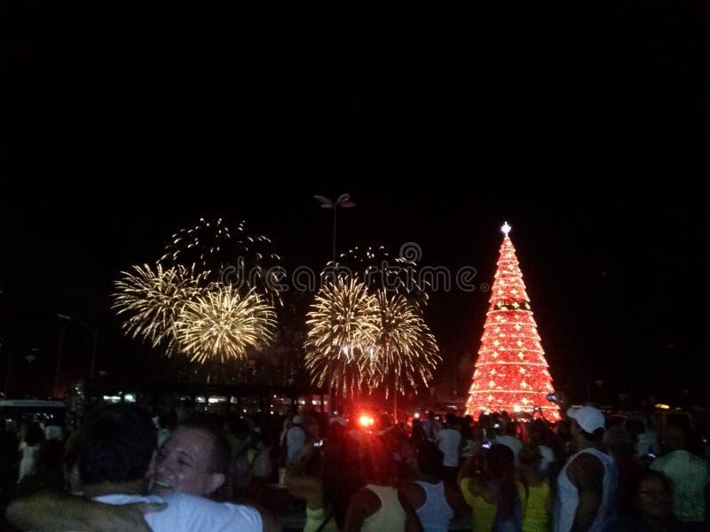 Fuegos artificiales y árbol de navidad fotografía de archivo