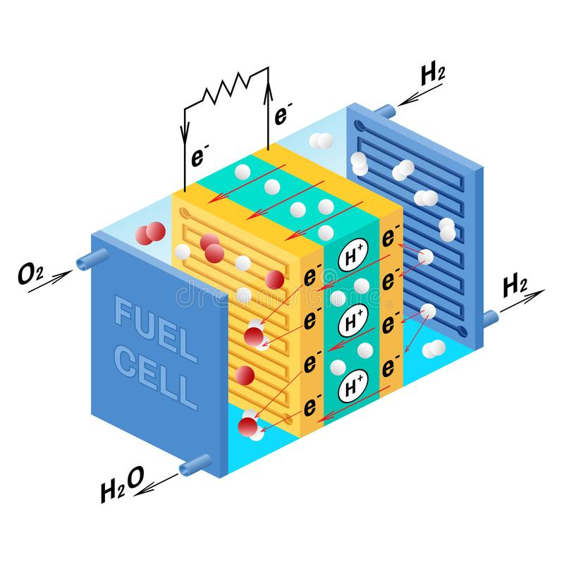 Fuel cell diagram. Vector illustration. Fuel cell diagram. Vector. Device that converts chemical potential energy into electrical energy. A PEM, Proton Exchange royalty free illustration