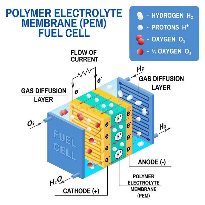 Fuel cell diagram. Vector illustration. Fuel cell diagram. Vector. Device that converts chemical potential energy into electrical energy. A PEM, Proton Exchange vector illustration