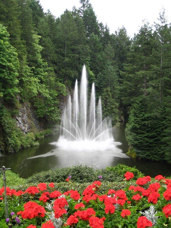 Fuente de agua con las flores rojas en el primero plano imágenes de archivo libres de regalías