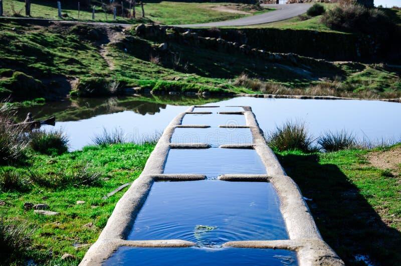 Fuente de consumición del agua para los animales en la naturaleza imagenes de archivo