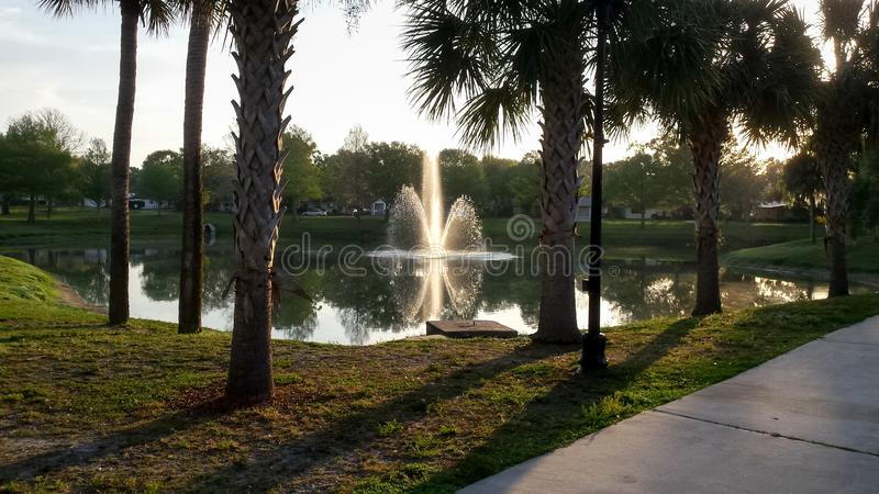 Fuente del parque en primavera imágenes de archivo libres de regalías