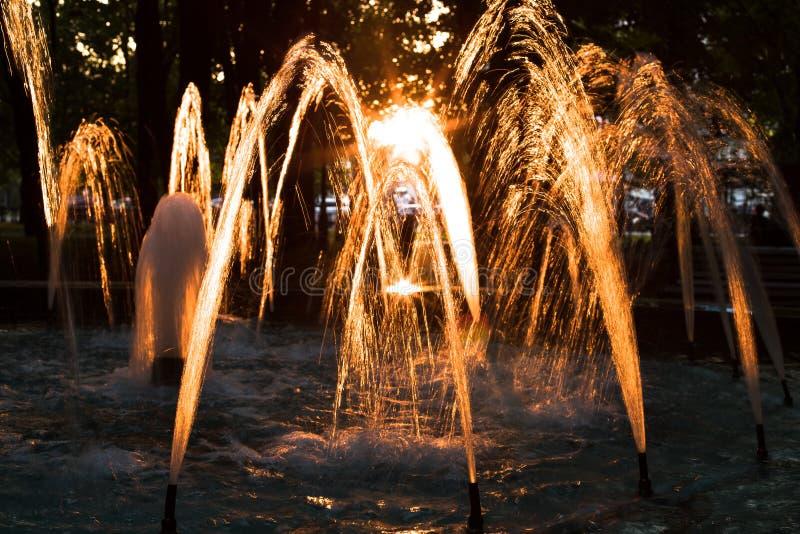 Fuente en la puesta del sol en parque fotos de archivo libres de regalías