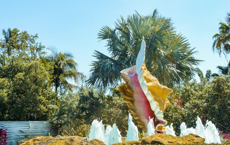 Fuente gigante de la concha marina delante de la palmera y del follaje imagenes de archivo