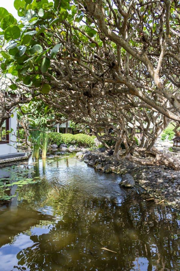Download Fuente ornamental foto de archivo. Imagen de jardín, planta - 41910086