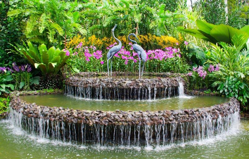 Fuente y orquídeas imagen de archivo