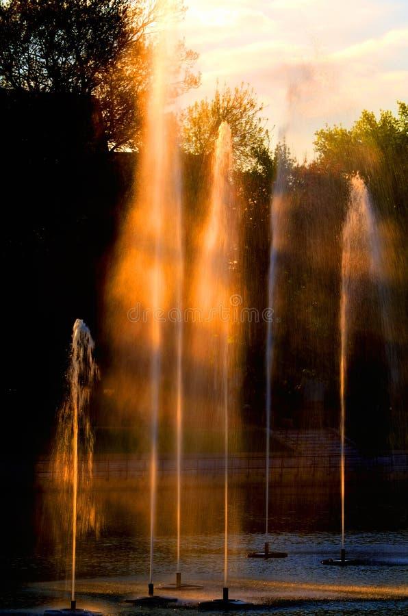 Fuentes en la puesta del sol imágenes de archivo libres de regalías