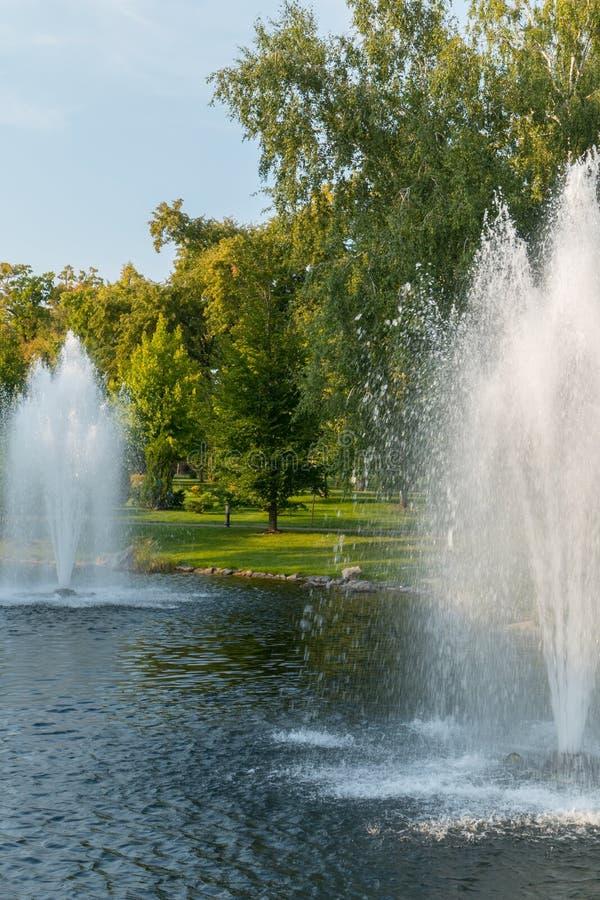 Fuentes en una charca con agua clara con un césped verde y árboles en la orilla Un lugar hermoso a relajarse fotografía de archivo libre de regalías