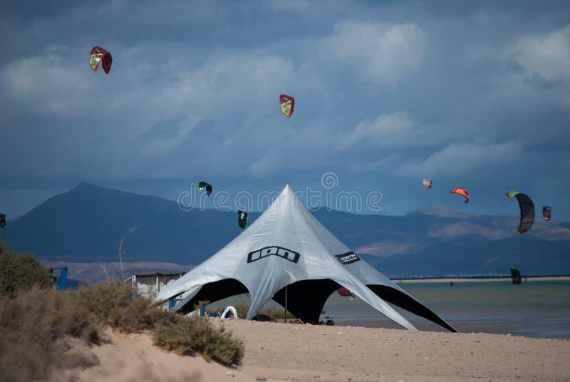Fuerteventura, école de cerf--ressac à la plage de Sotavento photos stock