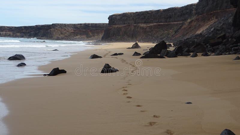 Fuerteventura royaltyfri foto
