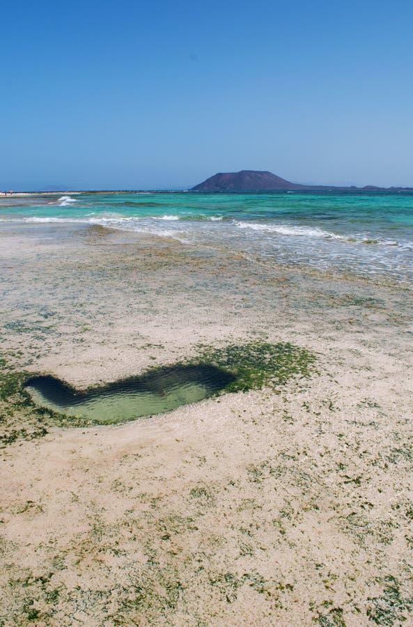 Fuerteventura, Canary Islands, Spain, beach, sand, dunes, nature, landscape, Lobos Island, low tide royalty free stock image