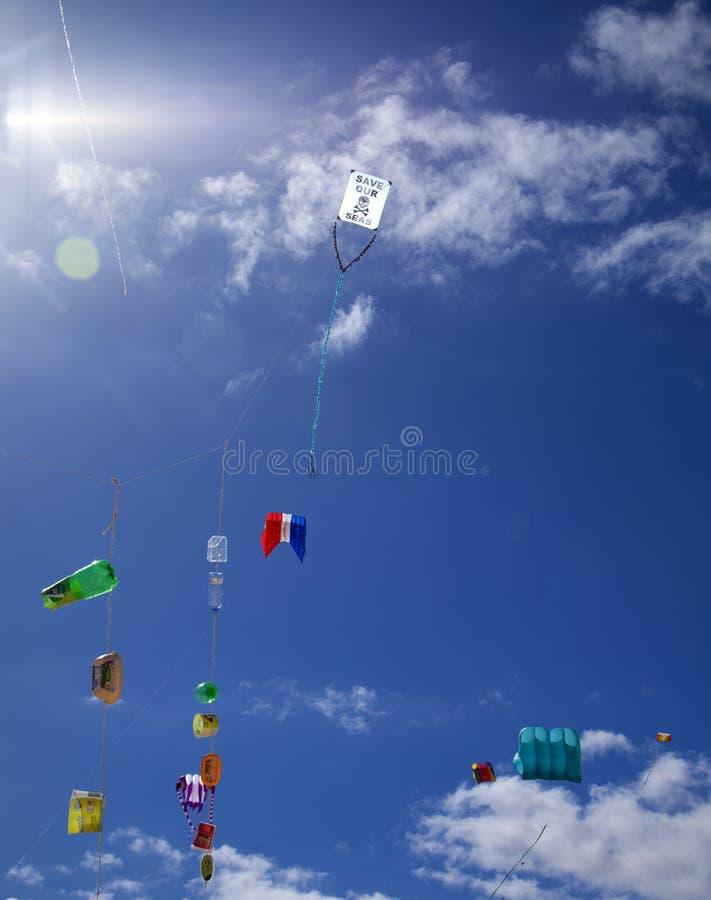 FUERTEVENTURA, ESPANHA - 10 DE NOVEMBRO: Salvo nosso papagaio dos mares com os plásticos do agregado familiar unidos à cauda voa  imagens de stock royalty free
