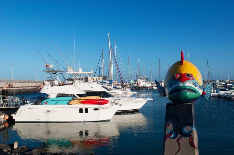 fuerteventura, Ilhas Canárias, Spain foto de stock royalty free