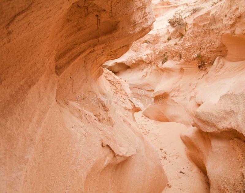 Fuerteventura intérieur du nord, barranco de los enamorados photos libres de droits