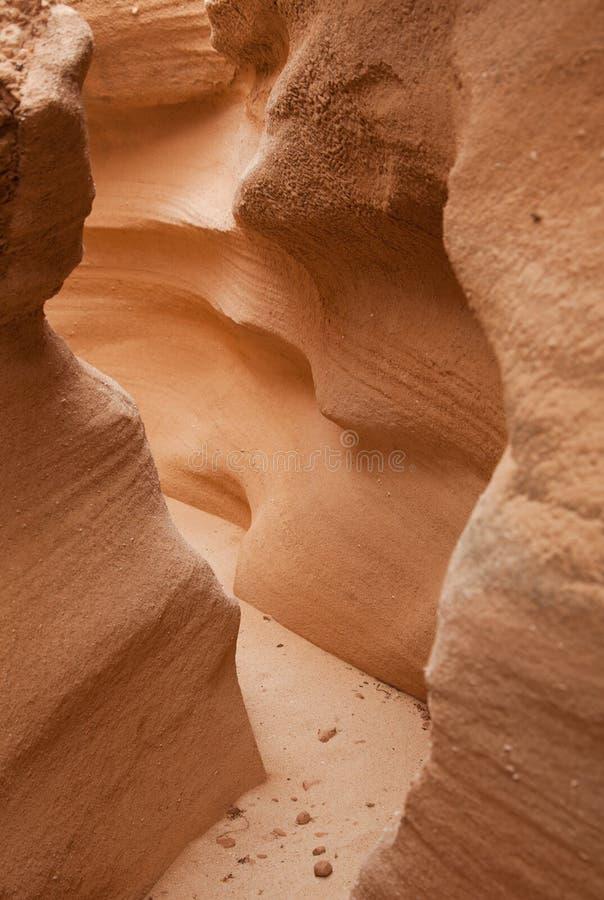 Fuerteventura interno do norte, barranco de los enamorados fotografia de stock royalty free