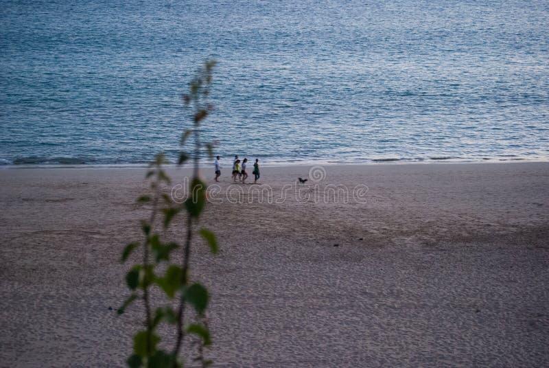 Fuerteventura, marchant par la plage images stock