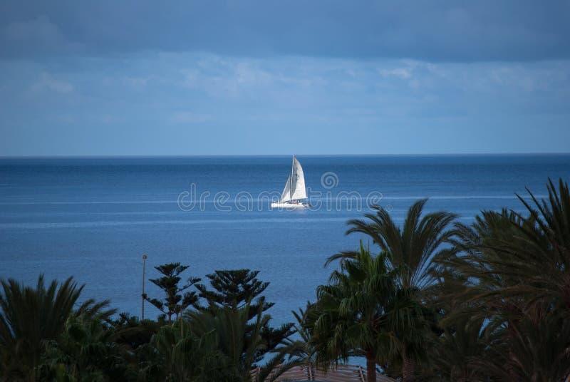 Fuerteventura, navegando a través de las palmeras fotos de archivo libres de regalías