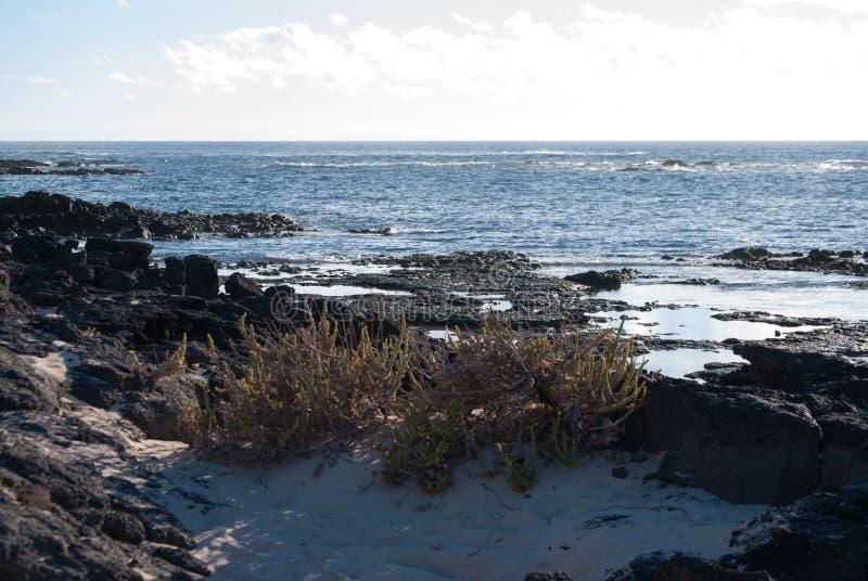 Fuerteventura, vue d'horizon photo libre de droits