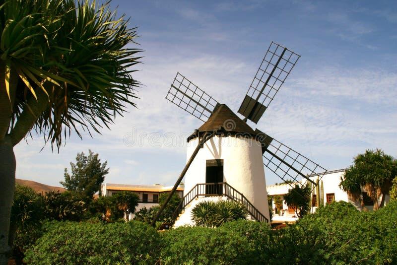 Fuerteventura Windmill stock photo