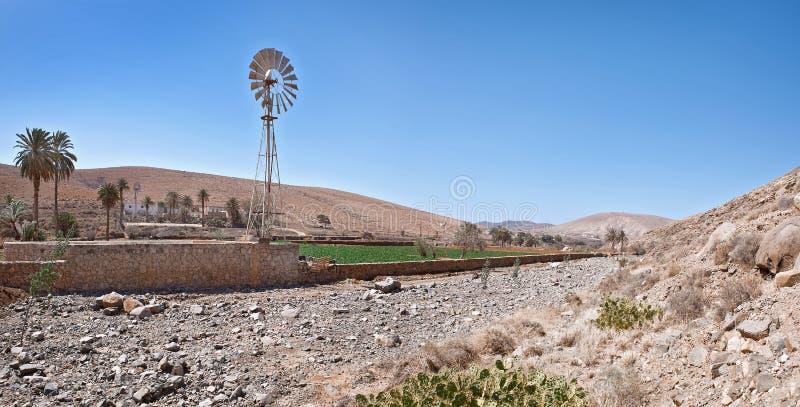 Fuerteventura - Windturbine bij het dorp Buen Paso stock fotografie