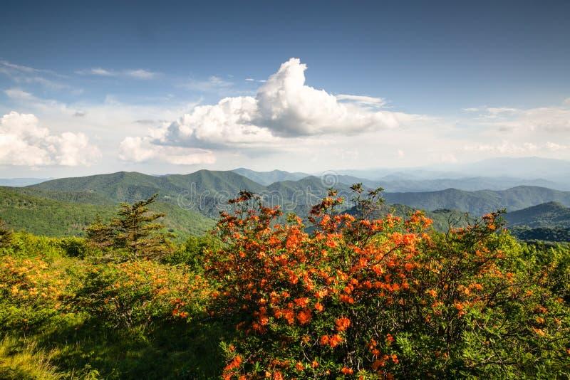 Fuga apalaches Blue Ridge Mountains da paisagem foto de stock