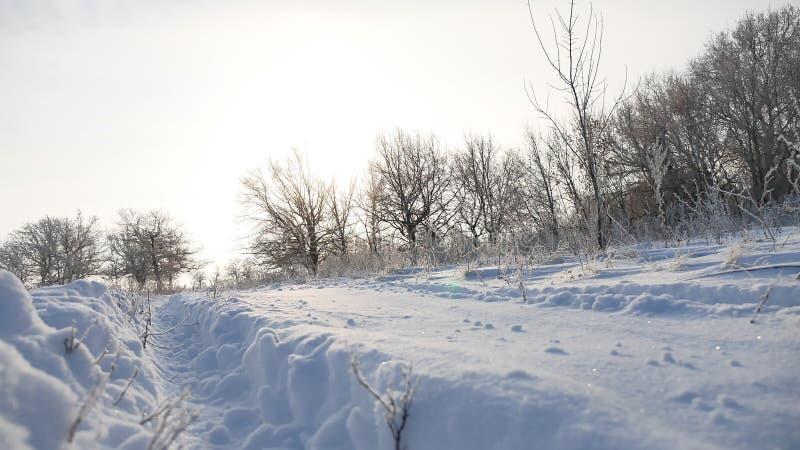 Fuga da estrada na natureza nevando do brilho do sol do golfe bonito da paisagem do inverno da luz solar da neve foto de stock