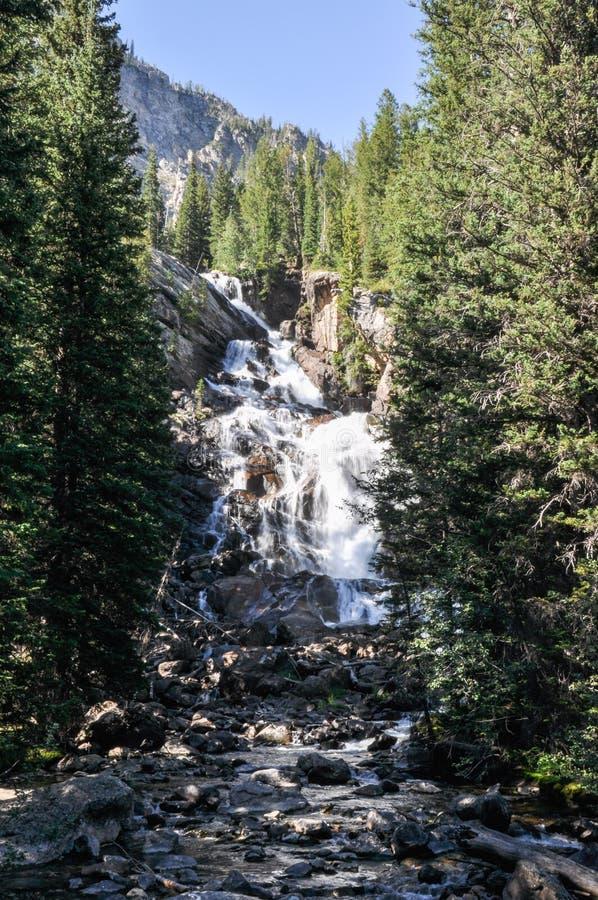 Fuga da garganta do pincel no parque nacional grande de Tetons, Wyoming, fotos de stock