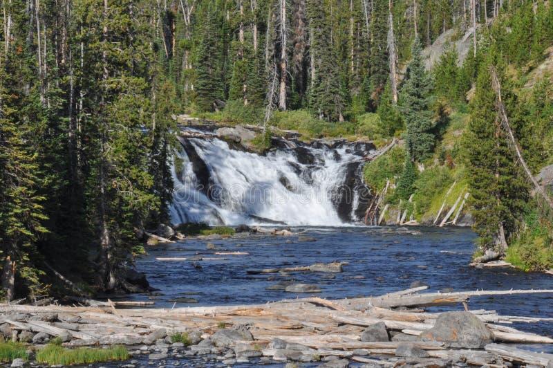 Fuga da garganta do pincel no parque nacional grande de Tetons, Wyoming, imagem de stock