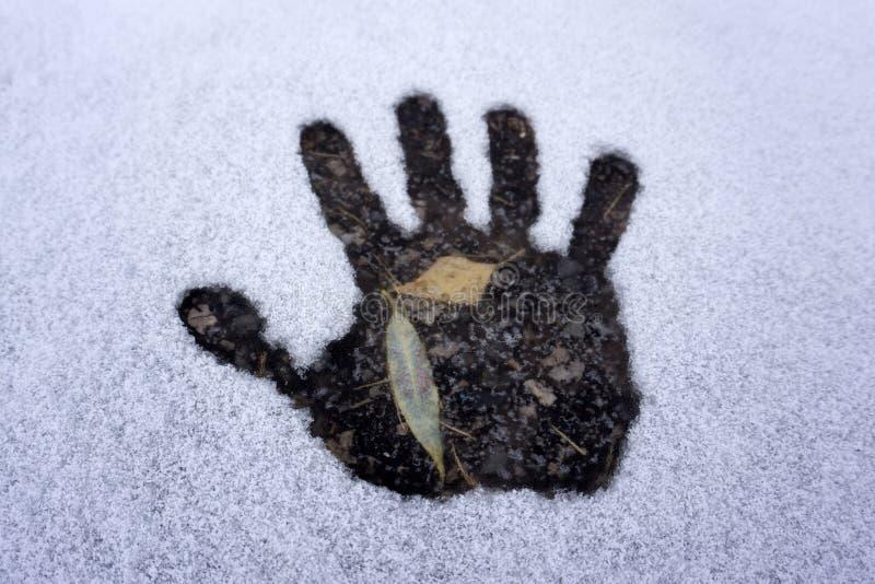 Fuga da mão e fuga do cão na neve branca, vista superior fotos de stock
