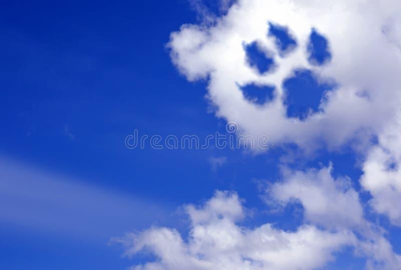 Fuga da pata do cão nas nuvens do céu foto de stock