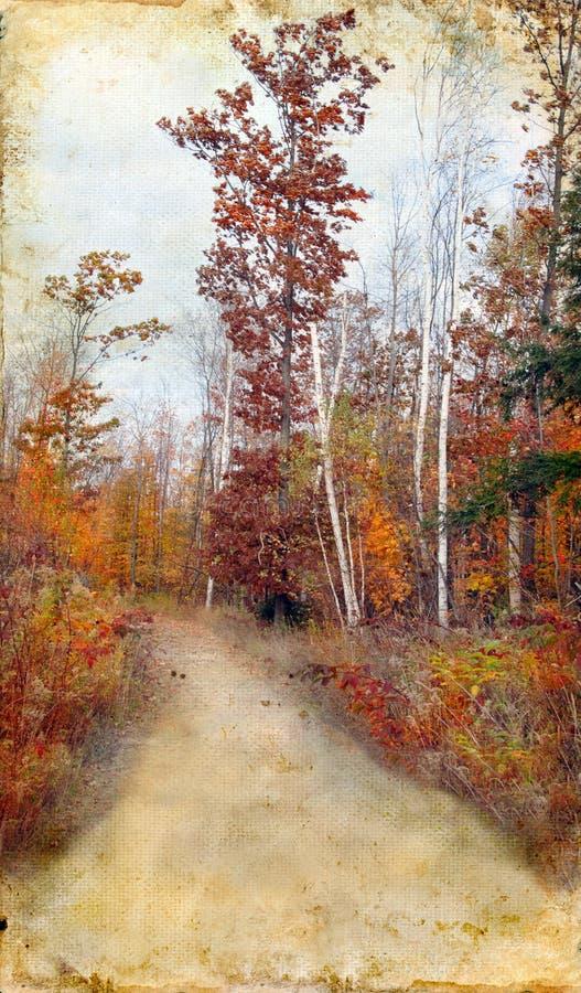 Fuga das madeiras do outono no fundo de Grunge fotos de stock