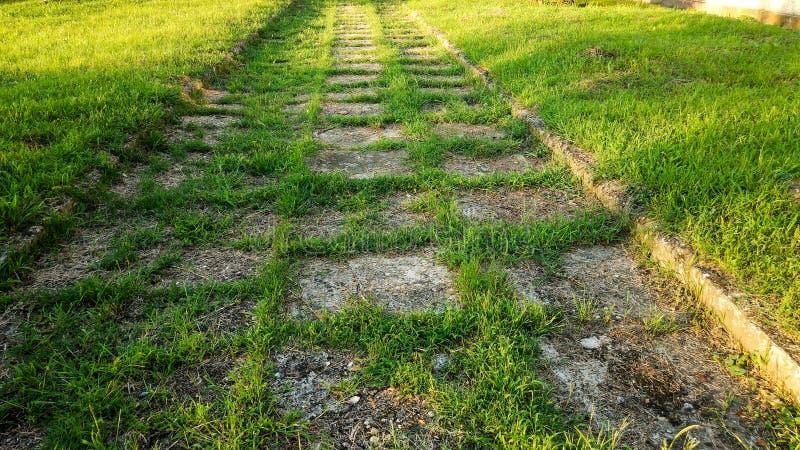 Fuga de caminhada abandonada, crescida na grama fotos de stock