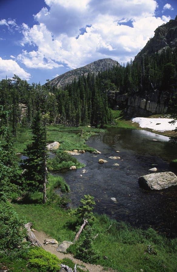 Fuga de caminhada ao longo de um córrego em montanhas rochosas imagens de stock royalty free