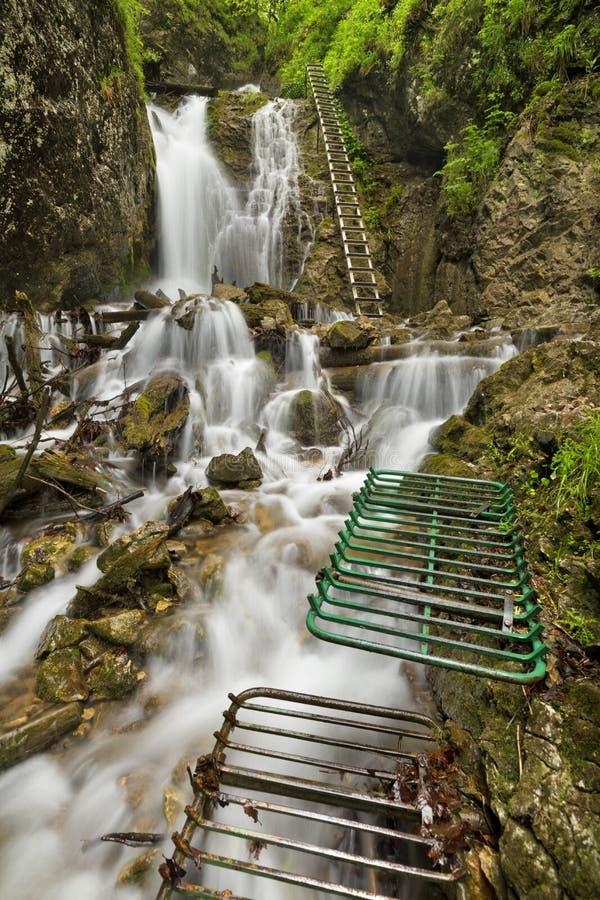 Fuga de caminhada através de um desfiladeiro luxúria no ½ Raj de SlovenskÃ, Eslováquia imagens de stock