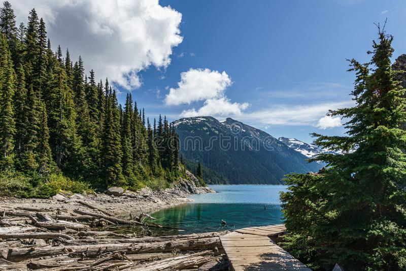 fuga de caminhada bonita com no lago Canadá do garibaldi fotos de stock royalty free