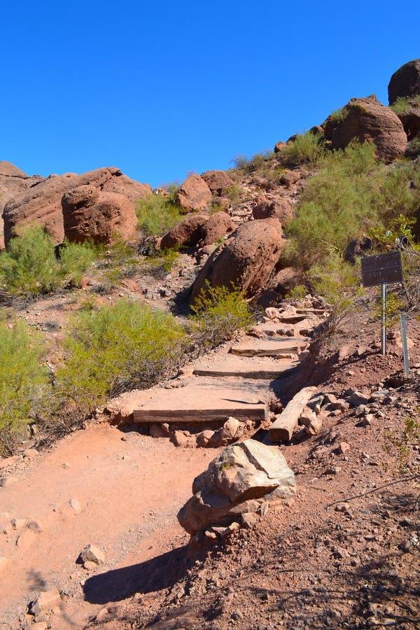 Fuga de caminhada do deserto na montanha do Camelback em Scottsdale, o Arizona EUA imagens de stock