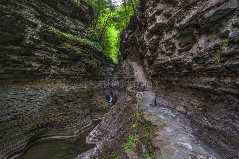 Fuga de caminhada em Watkins Glen Gorge imagens de stock royalty free