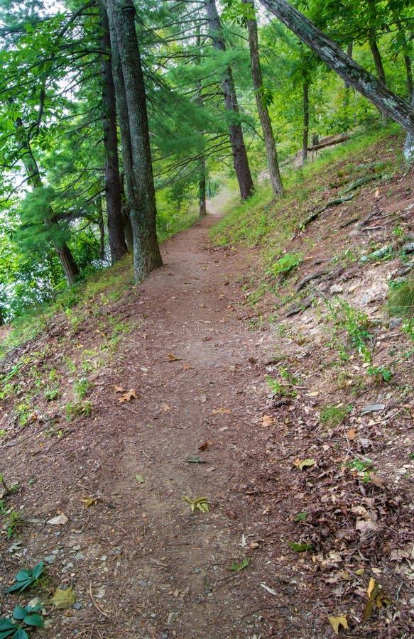 Fuga de caminhada nas montanhas fotografia de stock