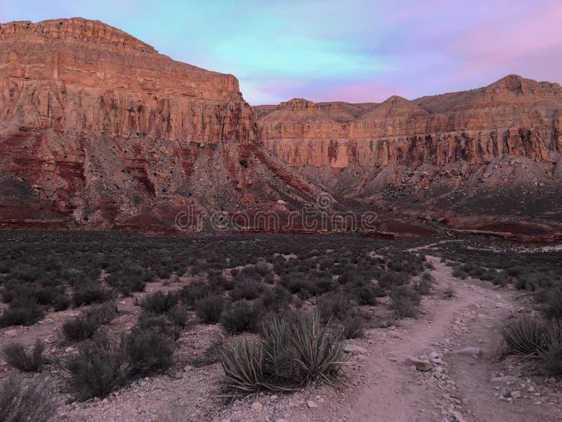 Fuga de caminhada no parque nacional do Grand Canyon no nascer do sol foto de stock