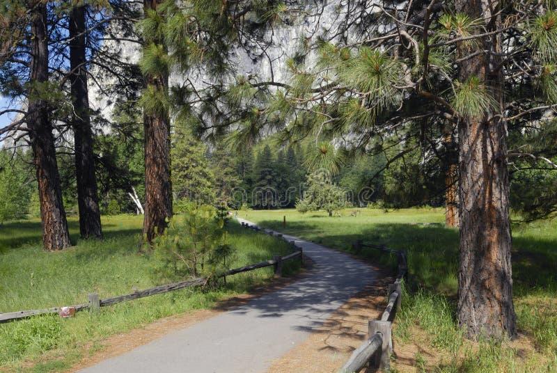 Fuga de caminhada no vale de Yosemite foto de stock
