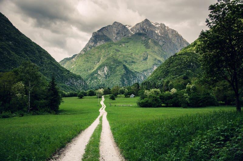 Fuga de caminhada no vale de Koritnica perto de Bovec, Eslovênia, Europa imagem de stock