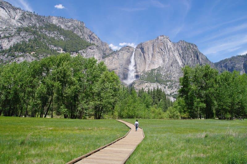 Fuga de madeira à queda do Horsetail, parque nacional de Yosemite foto de stock royalty free