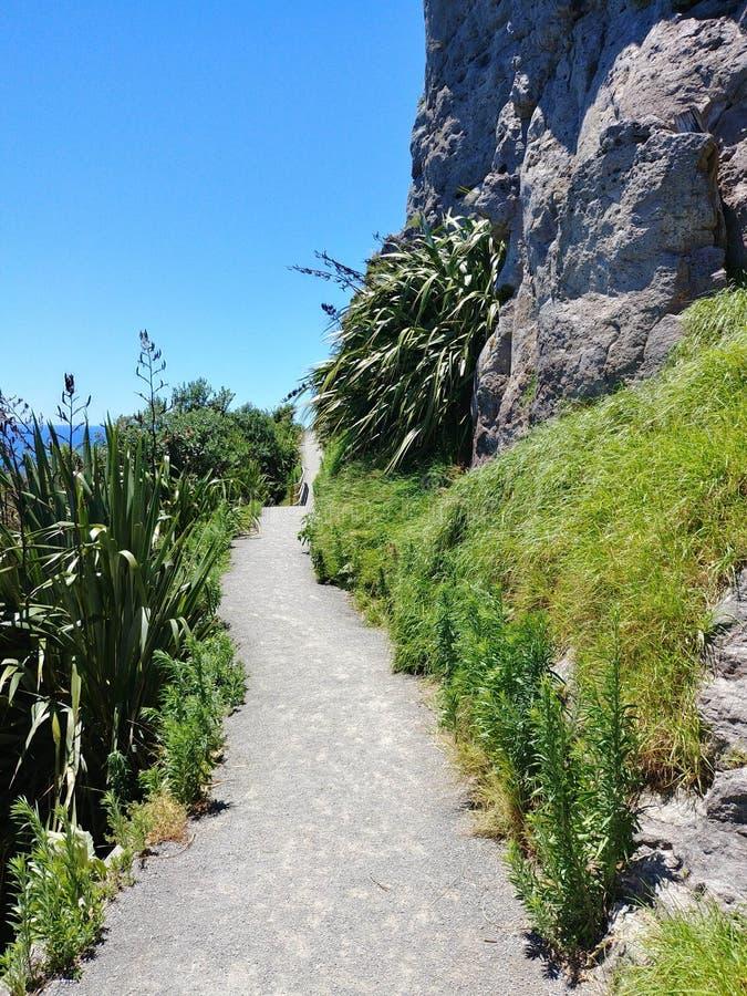 Fuga de Maunganui da montagem em Tauranga - Nova Zelândia imagens de stock