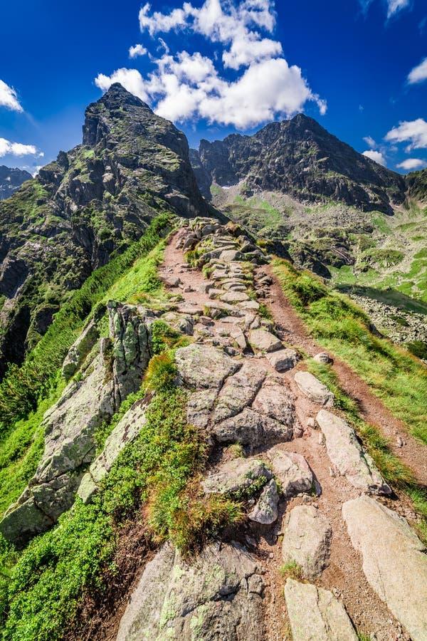 Fuga de montanha ao cielec no verão, montanhas do ½ do ¿ de Koï de Tatra, Polônia imagens de stock