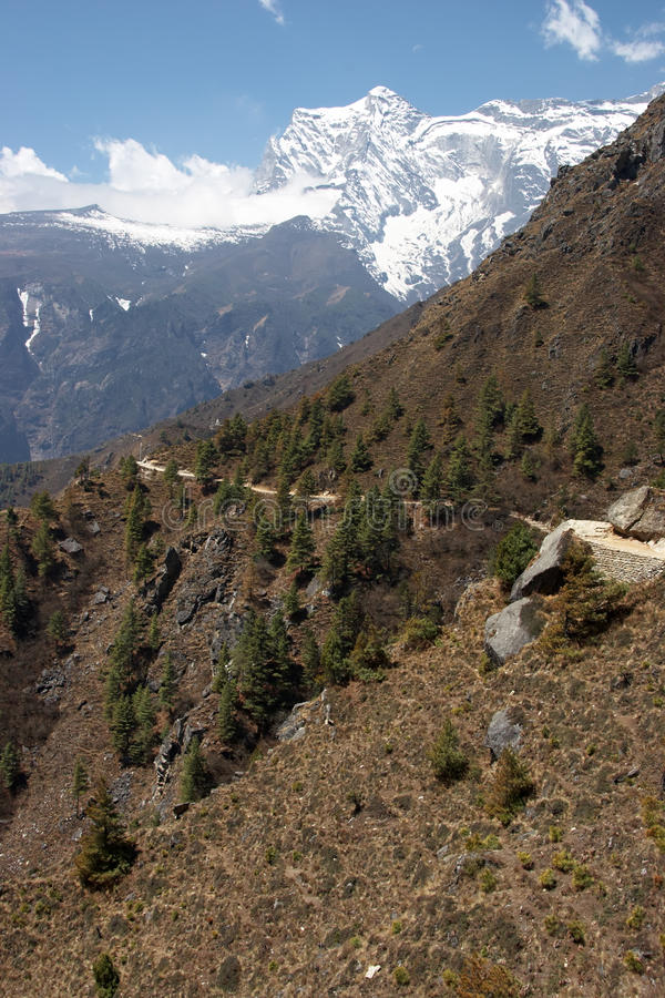 Fuga De Montanha Nos Himalayas, Nepal Fotos de Stock