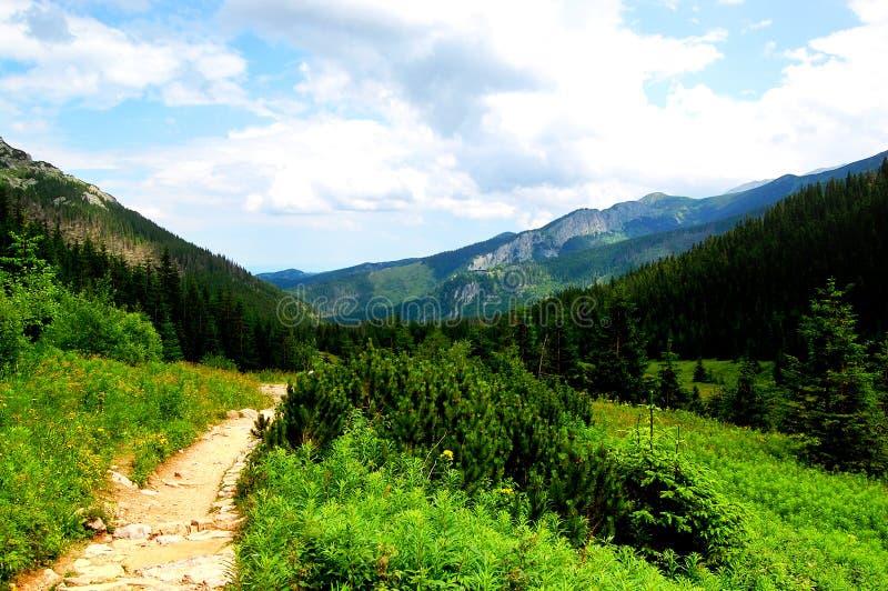 Fuga de montanha pitoresca com cenário bonito foto de stock royalty free