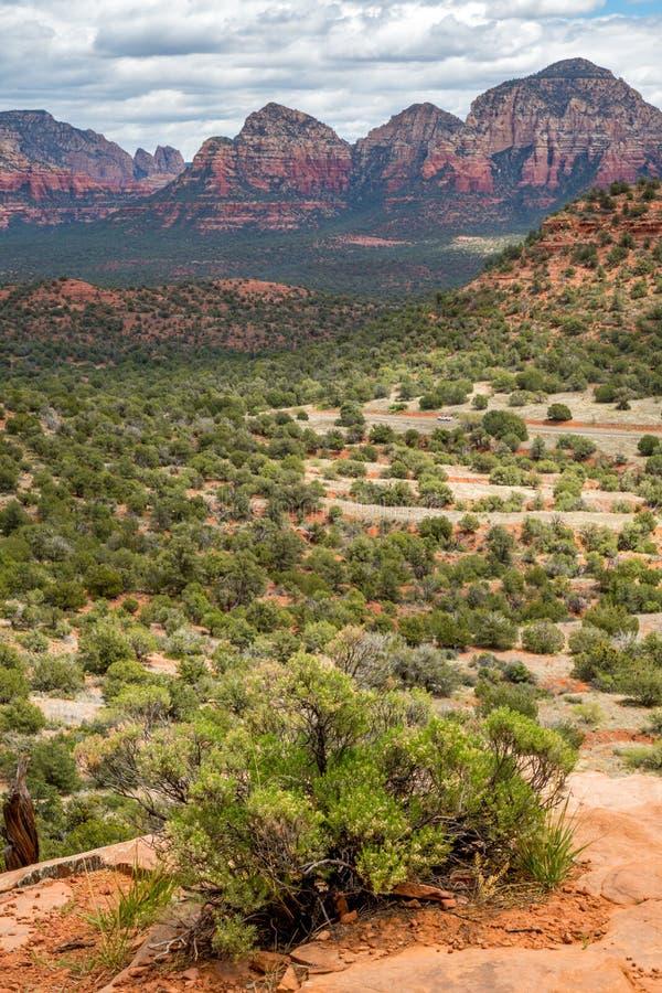 Fuga de montanha Sedona do urso o Arizona imagem de stock